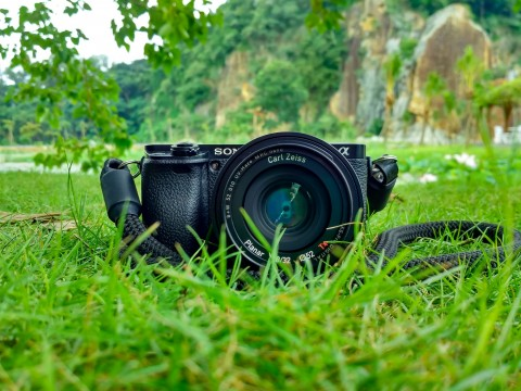 camera-field-grass-225157